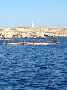 Tonijnkwekerij Malta